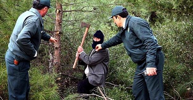 Orman muhafaza memuru alınacak