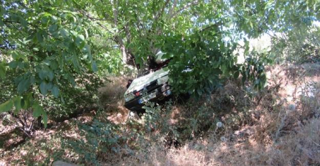 Otomobilin kontrolünü kaybeden sürücü ağaca çarptı: 2 yaralı