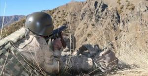 Mavi kategoride aranan PKK'lı terörist etkisiz hale getirildi