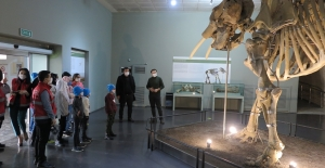 Suriyeli öksüz ve yetimler arkeoloji müzesini gezdi