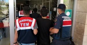 DEAŞ operasyonunda 2 kişi gözaltına alındı