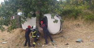 Otomobil ağaca çarptı: 1 ölü, 3 yaralı