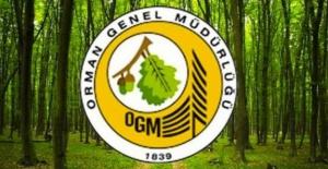 Orman Genel Müdürlüğü geçici işçi alımı yapacak