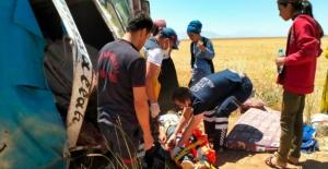 Elbistan'da tarım işçilerini taşıyan kamyonet devrildi: 7 yaralı