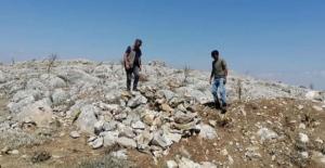 Elbistan'da evsinler yok edildi