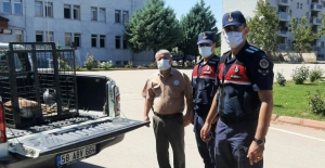 Ekinözü'nde yaralı yaban keçisine Jandarma sahip çıktı