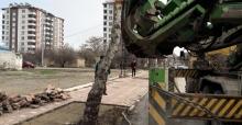 Genişleyen Caddedeki Ağaçlar Parklara Taşınıyor